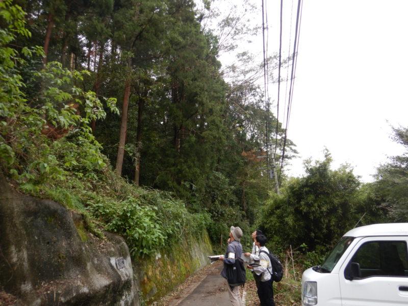 神奈川県森林現況予備調査