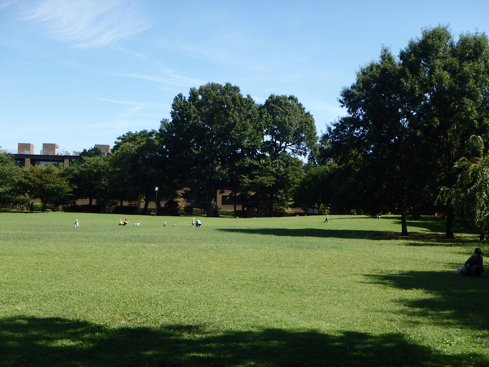 杉並区柏の宮公園基本計画~実施設計