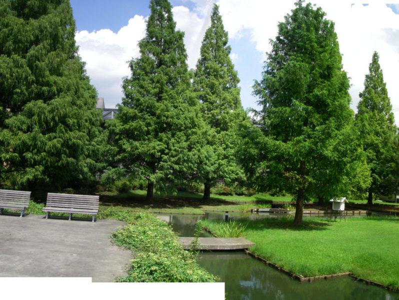 日本工業大学キャンパス環境整備コンサルティング業務