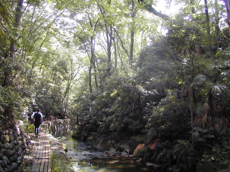 東京都指定名勝 等々力渓谷保全管理計画
