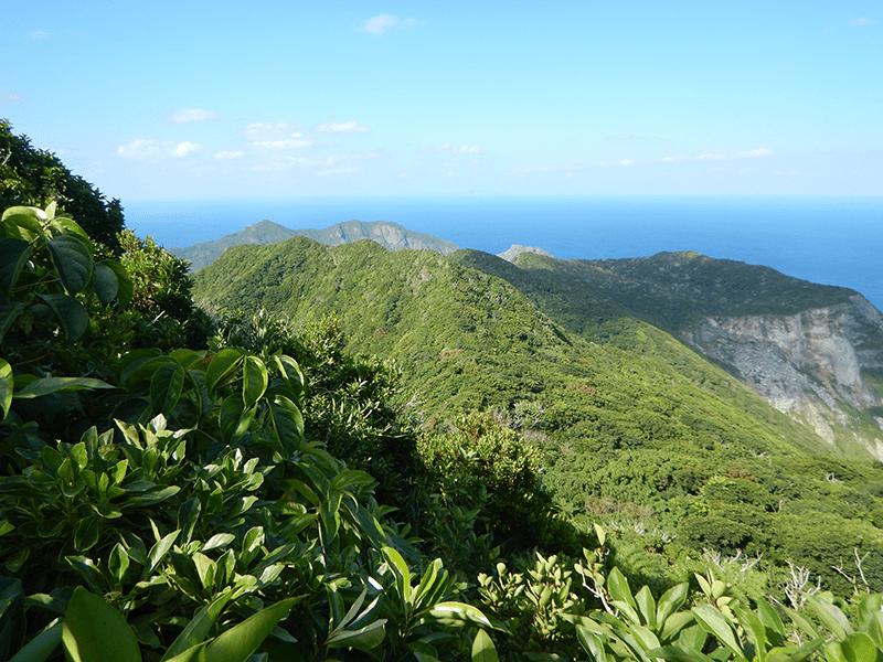母島石門一帯自然環境調査
